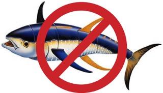 No Tuna!